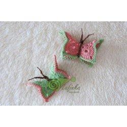 Motýlí duet